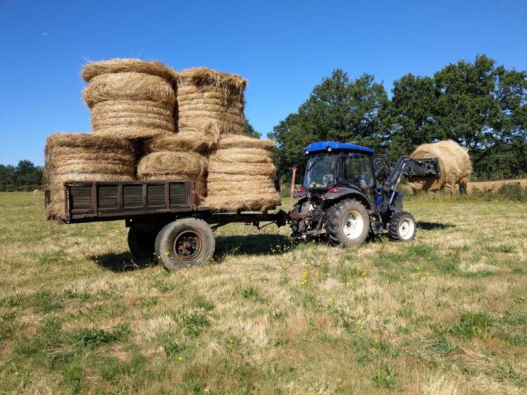Tracteur Lovol avec chargeur et remorque